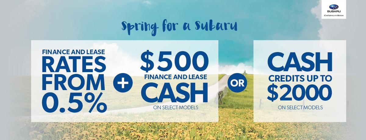 Subaru dealership for sale Maple