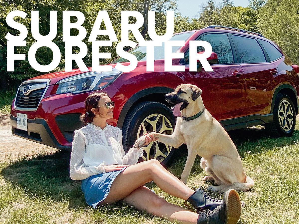 Subaru-Forester-Adventure in York Region