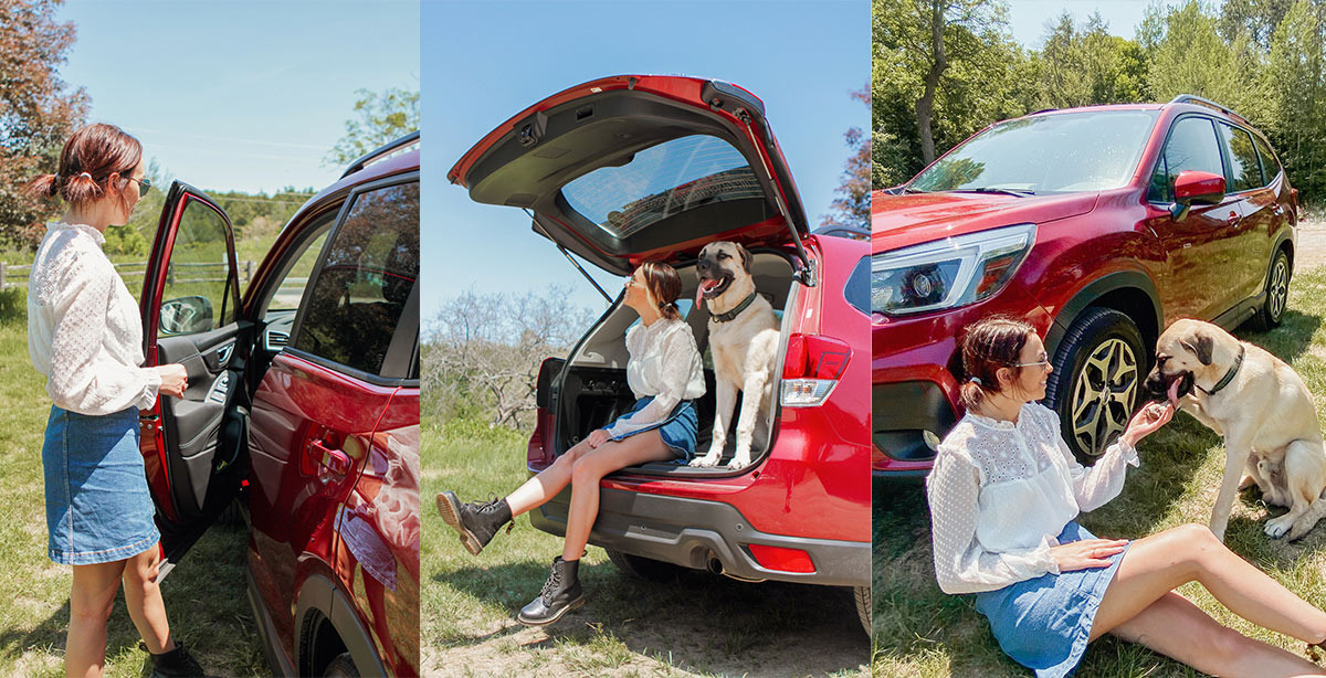 Subaru Forester Love